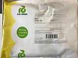 Семена свеклы Зеппо (Zeppo RZ) F1, 25 тыс.семян, фото 3