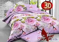 Полуторное постельное белье ранфорс TAG R616
