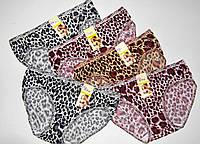 Трусы молодежка Бамбук-Модал леопард