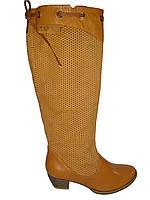 Сапоги женские демисезонные кожаные на каблуке Vizzavi 4005 коричневые