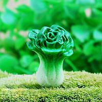 Ландшафтного декора микро-мини китайская капуста ЭКО бутылка озеленение