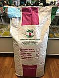 Семена кормовой свеклы Центаур Поли / Тsentaur Рoli, 1 кг, фото 4