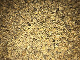 Насіння кормового буряка Урсус Полі / Ursus Рoli, 20 кг, фото 3