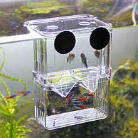 Аквариумные рыбки разведение молоди рыб инкубатория инкубатор противоскользящее покрытие