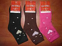 Женские махровые носки Ласточка. р. 37-41. Асорти, фото 1