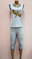 Пижама женская. В упаковке 5 шт. Размеры XL-5XL., фото 1