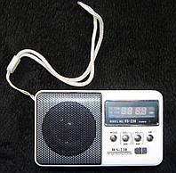 Портативная колонка SPS WS 239, радио, usb, micro sd, белая, фото 1