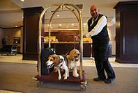 Носильщик в отель HotelOld