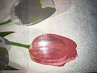 Голд,двухспалка(можно разные рисунки)