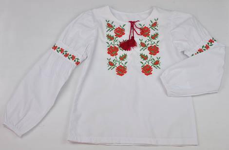 Нарядная блузка вышиванка с длинным рукавом Valeri