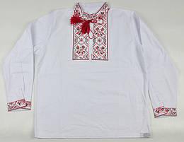 Вышиванка с красным орнаментом для мальчика