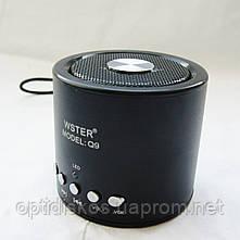 Bluetooth портативная колонка WS Q9 BT+MP3+FM, фото 2
