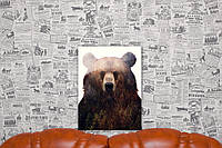 Медведь. Андреас Ли. Andreas Lie. 40х30 см. Репродукция.