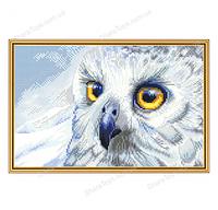 """Набор для вышивания нитками на белой канве """"Полярная сова"""""""