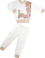 Пижама для мальчика бежевая размер 110 116 122 128