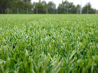 Уличное покрытие для теннисных кортов искусственная трава.