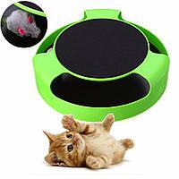 Интерактивная игрушка для кошек Catch-The-Mouse (Поймай мышку)