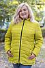 Стильная куртка больших размеров PK1-300 ( р.52-62)