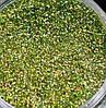Голографический глиттер, блестки 0,2 мм, салатовый