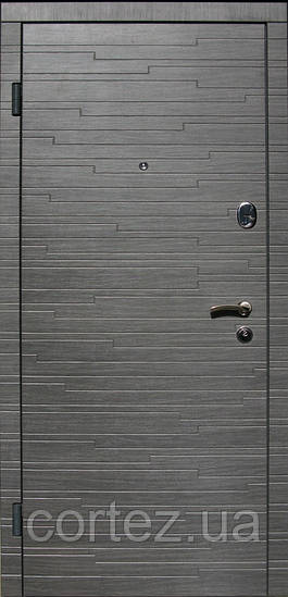 Двери входные Премиум+201