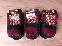 Носки женские махровые Дюна 38-40 опт