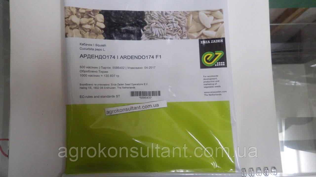 Семена кабачка Ардендо F1 (Enza Zaden) 500 семян — ранний гибрид (40-45 дней), светлый
