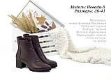 Стильні черевики на невисокому каблуці., фото 2