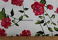 Коттон принт розовый  роза (фон белый)