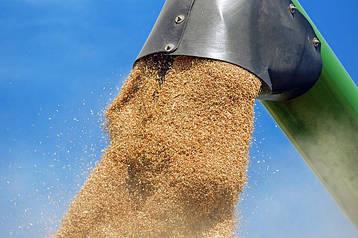 Зерновые погрузчики, зернодробилки, экструдеры, грануляторы