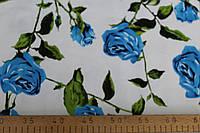 Коттон принт роза -синий