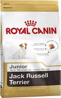 ROYAL CANIN (Роял канин) JACK RUSSEL JUNIOR 1,5кг сухой корм для щенков джек-рассел-терьера