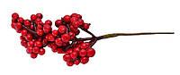 Ягоды смородина красная, 40 шт.на веточке.