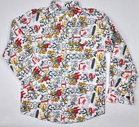 Рубашка цветная хлопковая Marions