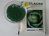 Семена капусты Бригадир BRIGADIER F1 2500 с