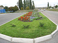 Улучшение почв внесением биогумуса