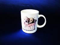 Чашка керамическая 5405  330мл VT6-19365(72шт)