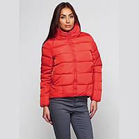 Женская куртка на молнии СС7800