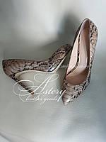 Женские бежевые туфли на шпильке из питона мультиколор