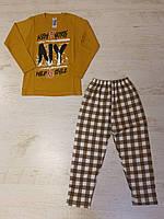 Пижама для мальчиков оптом,Турция,4-6 рр.,арт F456-4