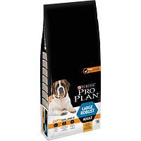 Purina Pro Plan  Adult Large Robust OptiBalance  14кг+4 кг в подарок-корм для собак крупных пород с курицей