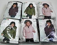 Детские куртки для девочек Lupilu (размерный ряд)