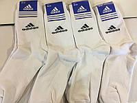 Носки мужские махровые adidas