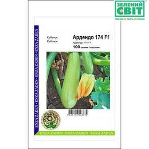 Семена кабачка Ардендо F1, 100 семян — ранний гибрид (40-45 дней), светлый, фото 2