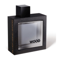 Dsquared2 He Wood Silver Wind Wood 100 ml