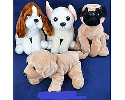 Мягкая игрушка Собака (Только бежевый цвет) 35 cm