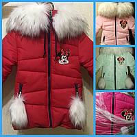 Зимняя куртка девочка на овчинке. Инга 86-92р