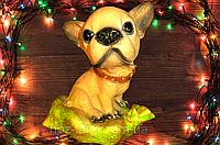 Собачка ЧихуаХуа 18 см. сувенир, капилка.