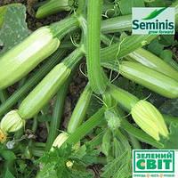 Семена кабачка Искандер F1 (Seminis), 500 семян — ультраранний гибрид (40-45 дней), светлый