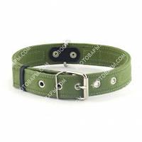 Ошейник х/б тесьма двойной (Collar) для собак