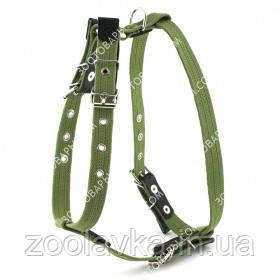 Шлея х/б тесьма (Collar) для собак